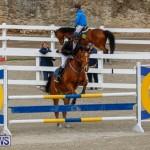 Bermuda Equestrian Federation Stardust Jumper Series, February 3 2018-6818