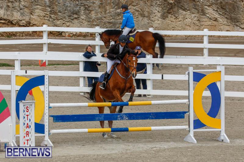 Bermuda-Equestrian-Federation-Stardust-Jumper-Series-February-3-2018-6818