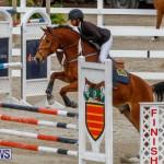 Bermuda Equestrian Federation Stardust Jumper Series, February 3 2018-6820