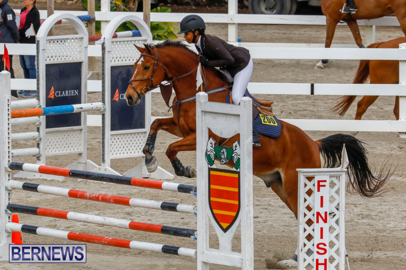 Bermuda-Equestrian-Federation-Stardust-Jumper-Series-February-3-2018-6820