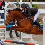 Bermuda Equestrian Federation Stardust Jumper Series, February 3 2018-6821