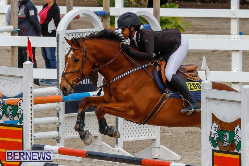 Bermuda-Equestrian-Federation-Stardust-Jumper-Series-February-3-2018-6821