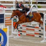 Bermuda Equestrian Federation Stardust Jumper Series, February 3 2018-6822