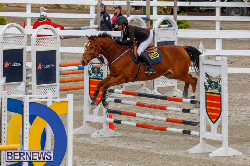 Bermuda-Equestrian-Federation-Stardust-Jumper-Series-February-3-2018-6822