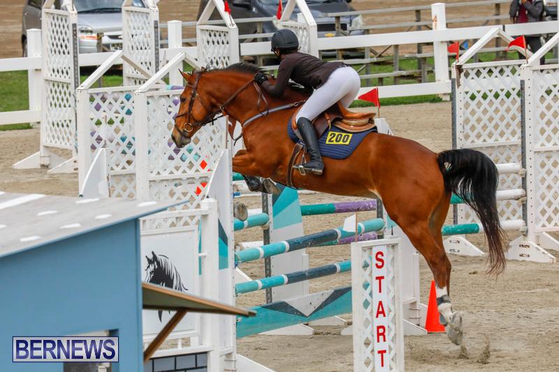 Bermuda-Equestrian-Federation-Stardust-Jumper-Series-February-3-2018-6829