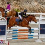 Bermuda Equestrian Federation Stardust Jumper Series, February 3 2018-6834