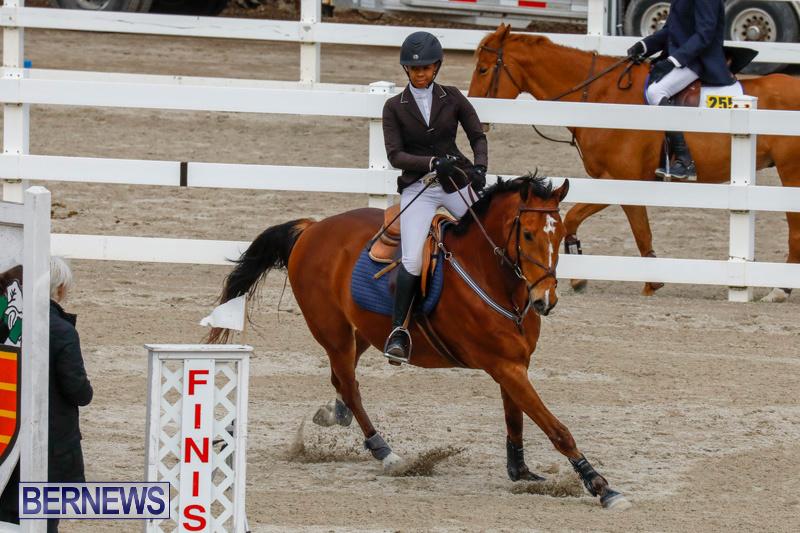 Bermuda-Equestrian-Federation-Stardust-Jumper-Series-February-3-2018-6841