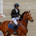 Bermuda Equestrian Federation Stardust Jumper Series, February 3 2018-6853