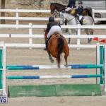 Bermuda Equestrian Federation Stardust Jumper Series, February 3 2018-6860