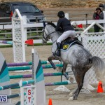 Bermuda Equestrian Federation Stardust Jumper Series, February 3 2018-6865