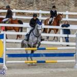 Bermuda Equestrian Federation Stardust Jumper Series, February 3 2018-6868
