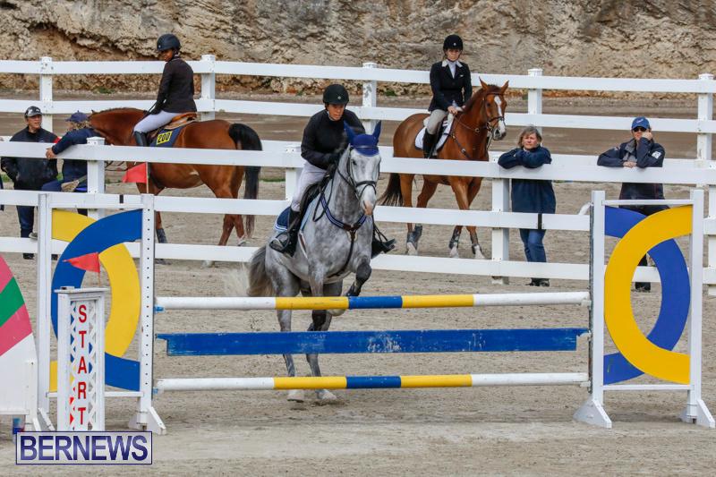 Bermuda-Equestrian-Federation-Stardust-Jumper-Series-February-3-2018-6868