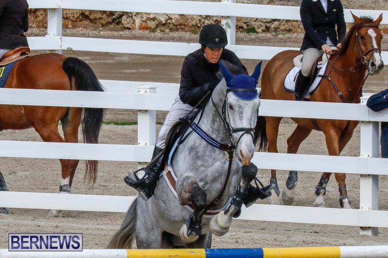 Bermuda-Equestrian-Federation-Stardust-Jumper-Series-February-3-2018-6869