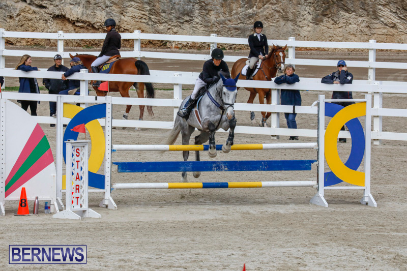 Bermuda-Equestrian-Federation-Stardust-Jumper-Series-February-3-2018-6870