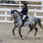 Bermuda Equestrian Federation Stardust Jumper Series, February 3 2018-6879
