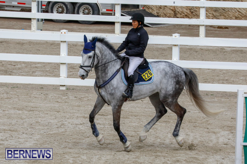 Bermuda-Equestrian-Federation-Stardust-Jumper-Series-February-3-2018-6879
