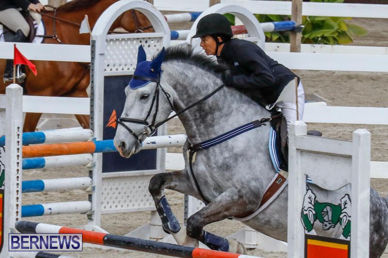 Bermuda-Equestrian-Federation-Stardust-Jumper-Series-February-3-2018-6880