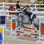 Bermuda Equestrian Federation Stardust Jumper Series, February 3 2018-6881