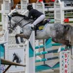 Bermuda Equestrian Federation Stardust Jumper Series, February 3 2018-6886