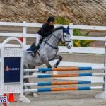Bermuda Equestrian Federation Stardust Jumper Series, February 3 2018-6890