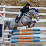 Bermuda Equestrian Federation Stardust Jumper Series, February 3 2018-6891
