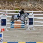 Bermuda Equestrian Federation Stardust Jumper Series, February 3 2018-6892