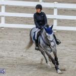 Bermuda Equestrian Federation Stardust Jumper Series, February 3 2018-6896