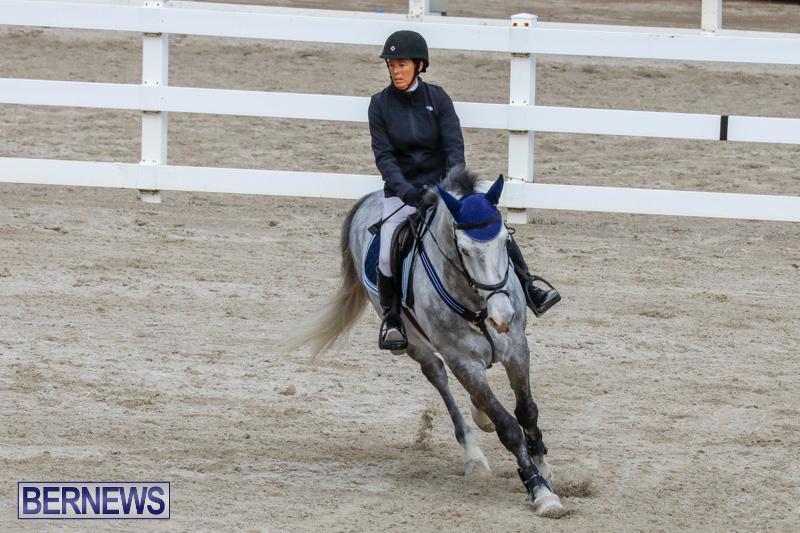 Bermuda-Equestrian-Federation-Stardust-Jumper-Series-February-3-2018-6896