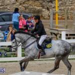 Bermuda Equestrian Federation Stardust Jumper Series, February 3 2018-6902
