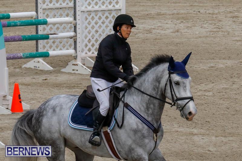 Bermuda-Equestrian-Federation-Stardust-Jumper-Series-February-3-2018-6904
