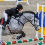 Bermuda Equestrian Federation Stardust Jumper Series, February 3 2018-6906