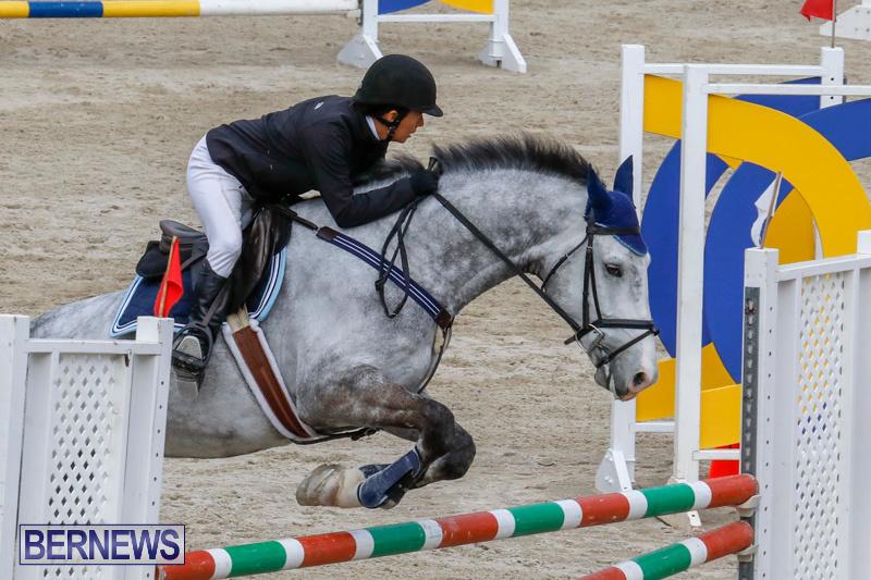 Bermuda-Equestrian-Federation-Stardust-Jumper-Series-February-3-2018-6906