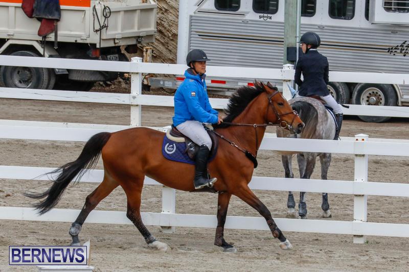 Bermuda-Equestrian-Federation-Stardust-Jumper-Series-February-3-2018-6912