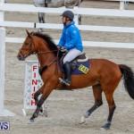 Bermuda Equestrian Federation Stardust Jumper Series, February 3 2018-6917