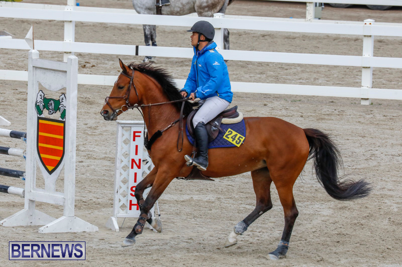 Bermuda-Equestrian-Federation-Stardust-Jumper-Series-February-3-2018-6917