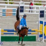 Bermuda Equestrian Federation Stardust Jumper Series, February 3 2018-6930