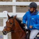 Bermuda Equestrian Federation Stardust Jumper Series, February 3 2018-6932