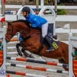 Bermuda Equestrian Federation Stardust Jumper Series, February 3 2018-6936
