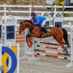 Bermuda Equestrian Federation Stardust Jumper Series, February 3 2018-6937