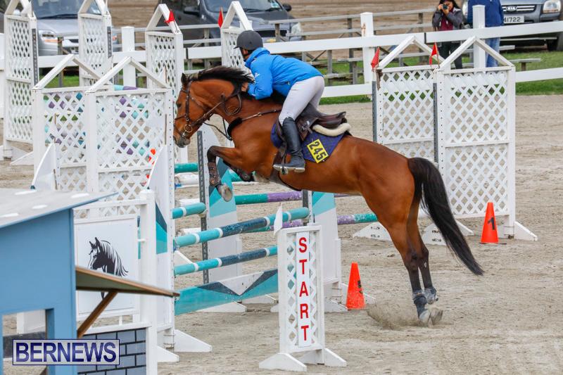 Bermuda-Equestrian-Federation-Stardust-Jumper-Series-February-3-2018-6939