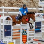 Bermuda Equestrian Federation Stardust Jumper Series, February 3 2018-6945