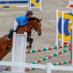Bermuda Equestrian Federation Stardust Jumper Series, February 3 2018-6956