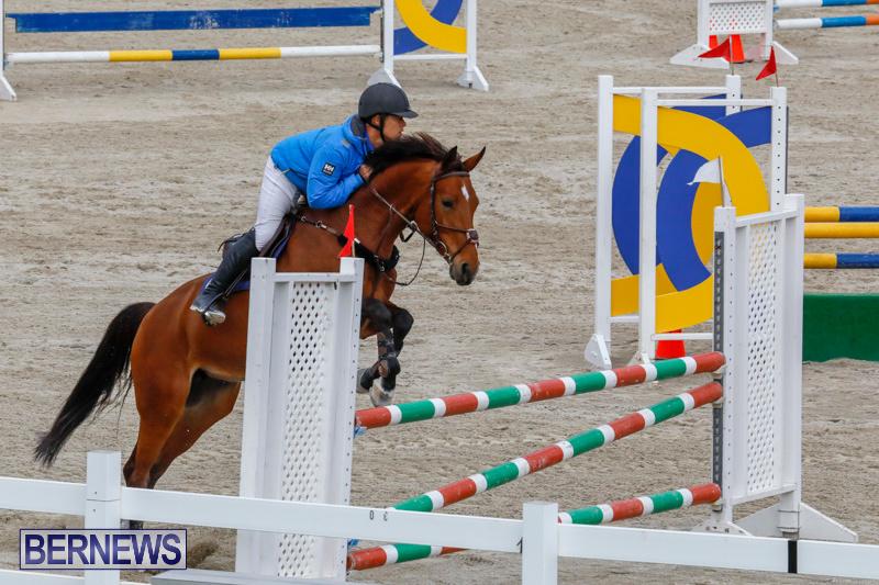 Bermuda-Equestrian-Federation-Stardust-Jumper-Series-February-3-2018-6956
