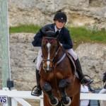Bermuda Equestrian Federation Stardust Jumper Series, February 3 2018-6969