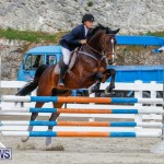 Bermuda Equestrian Federation Stardust Jumper Series, February 3 2018-6985