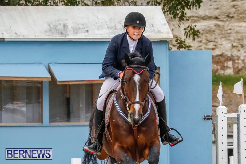Bermuda-Equestrian-Federation-Stardust-Jumper-Series-February-3-2018-6996
