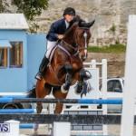 Bermuda Equestrian Federation Stardust Jumper Series, February 3 2018-6997