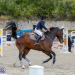 Bermuda Equestrian Federation Stardust Jumper Series, February 3 2018-7264