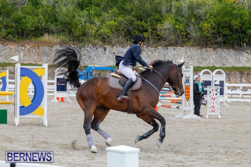 Bermuda-Equestrian-Federation-Stardust-Jumper-Series-February-3-2018-7264