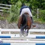 Bermuda Equestrian Federation Stardust Jumper Series, February 3 2018-7266